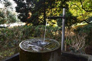 Heilpraktiker in der Nähe von Würzburg, Dettelbach und Kitzingen: TCM (traditionelle chinesische Medizin) und das Wasserelement
